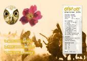 Brochure voor introspectieve reis (2008)