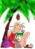 Boekomslag: Let op voor vallende kokosnoten (2008)